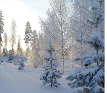 Winterurlaub in Garmisch-Partenkirchen – Winterlandschaft in Schnee