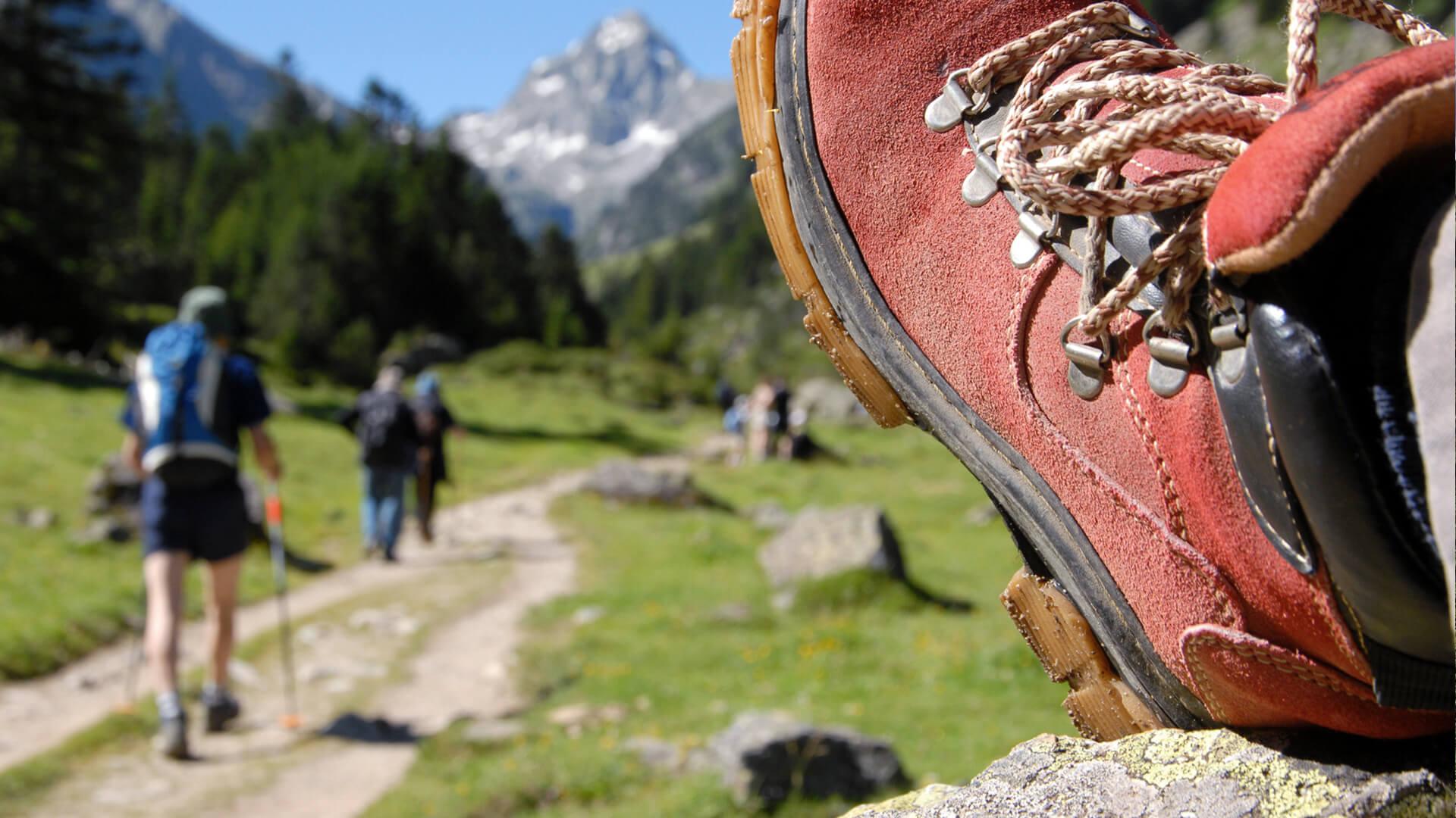 Biohotel Bavaria Wandern Menschen
